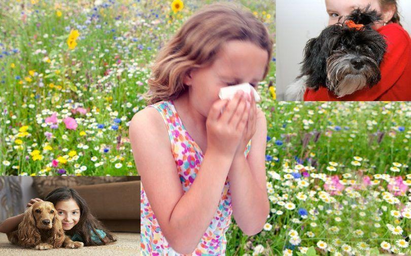 niños alergias