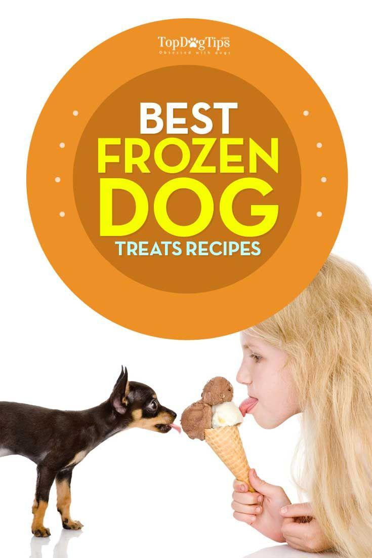 Mejores Recetas congeladas para perros golosinas para Hot Summer Days