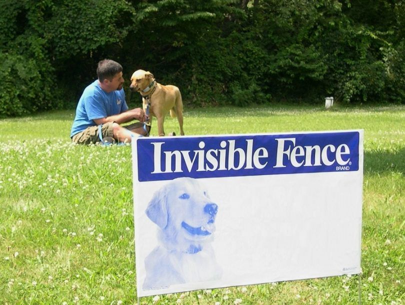 vallas invisibles para perros