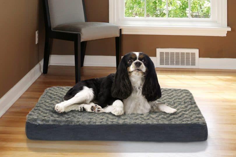 FurHaven NAP cama del animal doméstico de rejilla del colchón ortopédico para mascotas