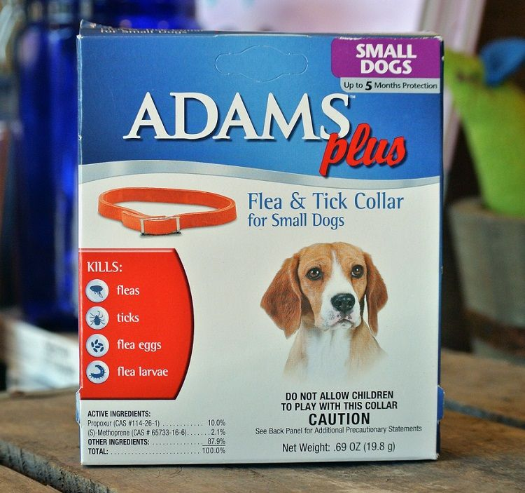 Adams Plus de pulgas y garrapatas Collar