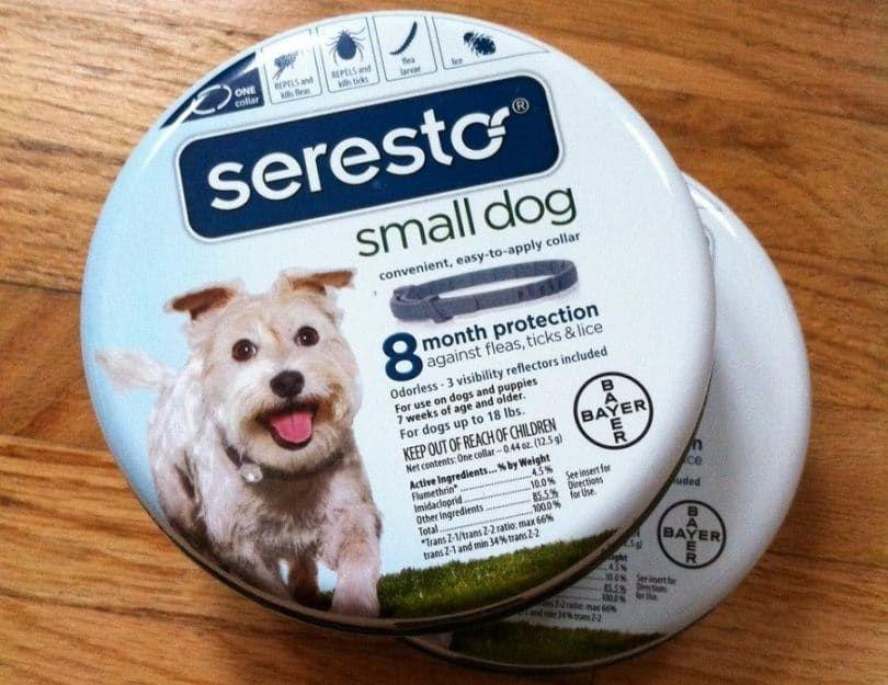 El tratamiento de pulgas y garrapatas en perros de razas pequeñas Seresto