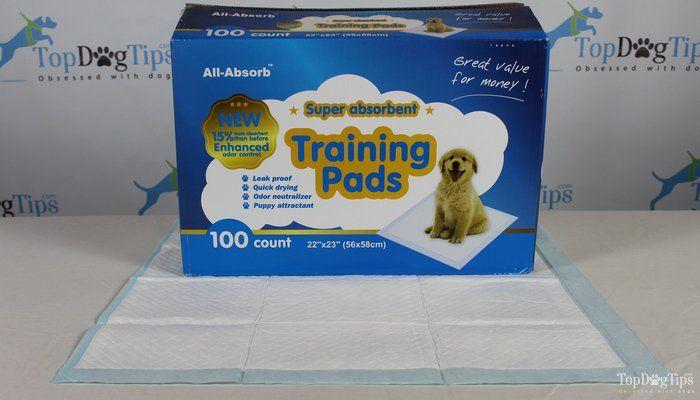 Mejor Cachorro entrenamiento insignificante Pad Comparación