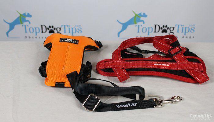 Comparación de las mejores del cinturón de seguridad para perros