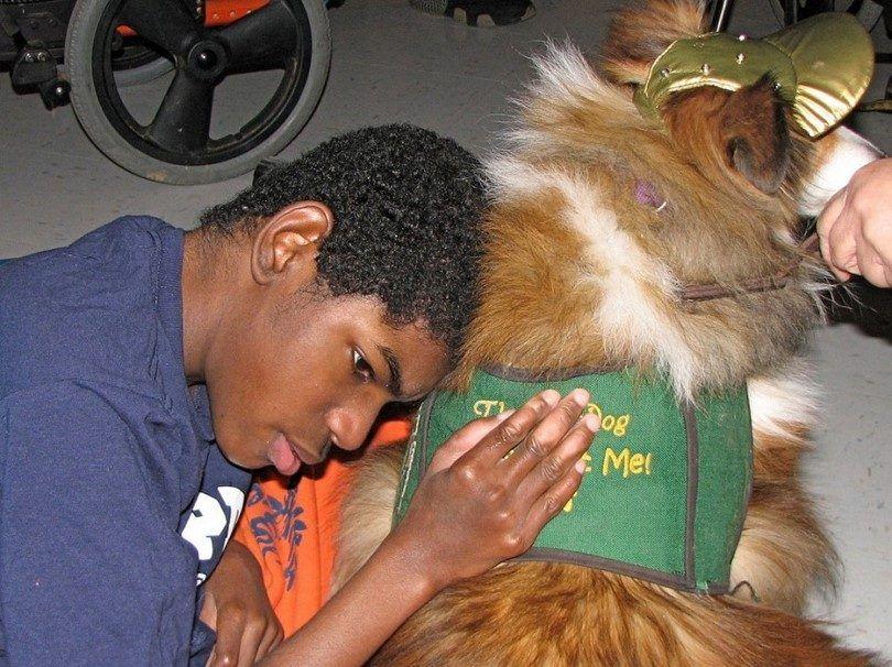 Los perros de terapia ayuda a uno de cada necesidad