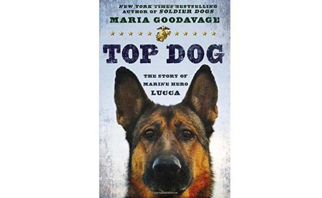 ReseГ±a del libro Top Dog La historia de la Marina hГ©roe Lucca 1