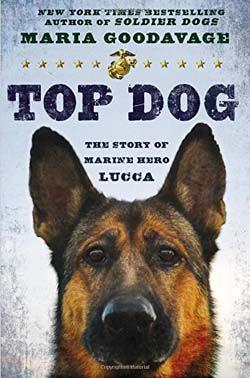 ReseГ±a del libro Top Dog La historia de la Marina hГ©roe Lucca