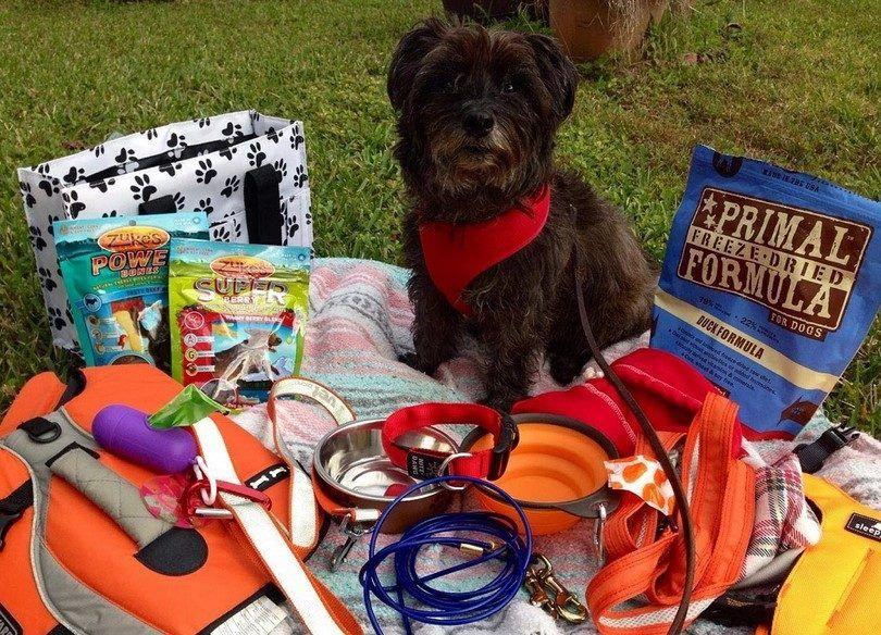 kit de camping perro