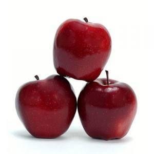 ¿Puedo dar mis manzanas perro?