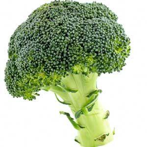 ¿Puedo darle a mi perro brócoli?