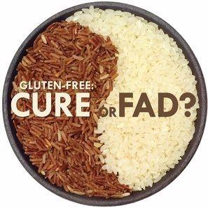 ¿Puedo dar mi comida para perros con gluten?