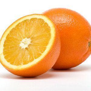 ¿Puedo dar mis naranjas perro?