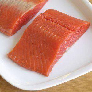 ¿Puedo dar mi salmón perro?