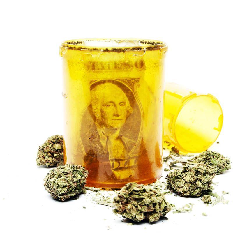 Negocios y consumo de cannabis en la industria del PET Estados Unidos - Startups