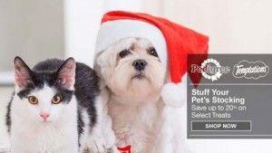 Amazon mejores ofertas en productos para perros para la Navidad