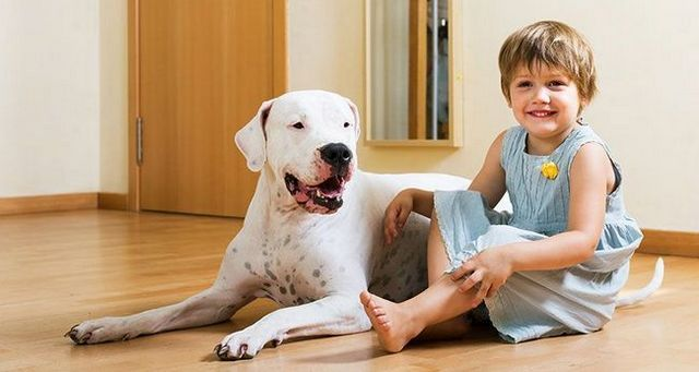 NiГ±o con miedo a los perros