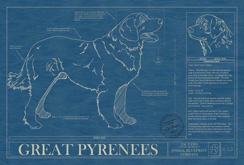 Gran infografГa Pirineos