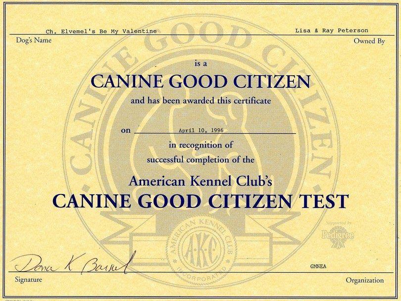 certificado de CGC