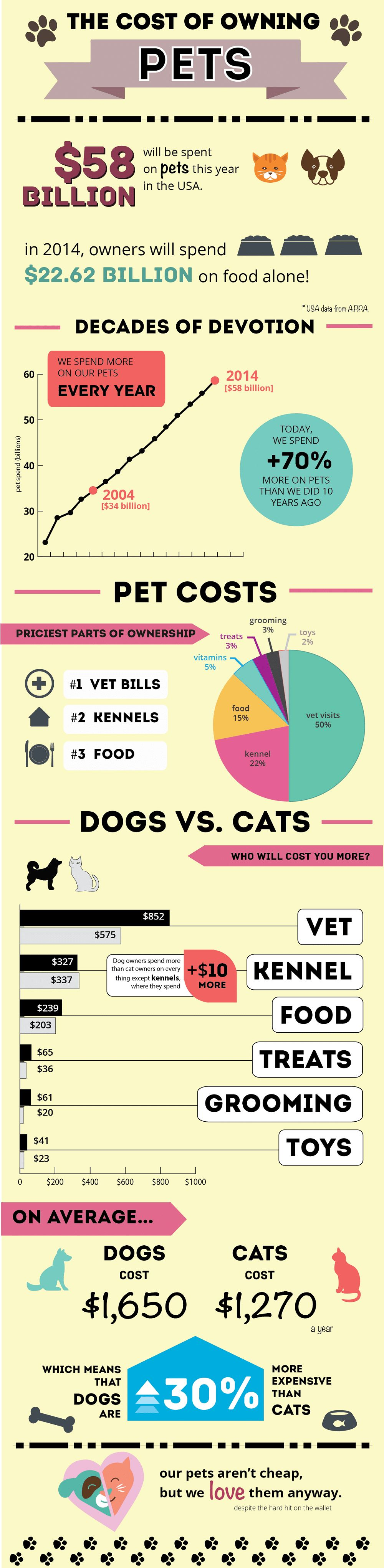 Coste de poseer un perro: datos y cifras que cada propietario potencial del perro debe saber