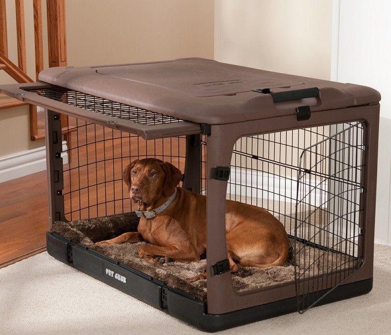 Perro en el cratew con las puertas abiertas