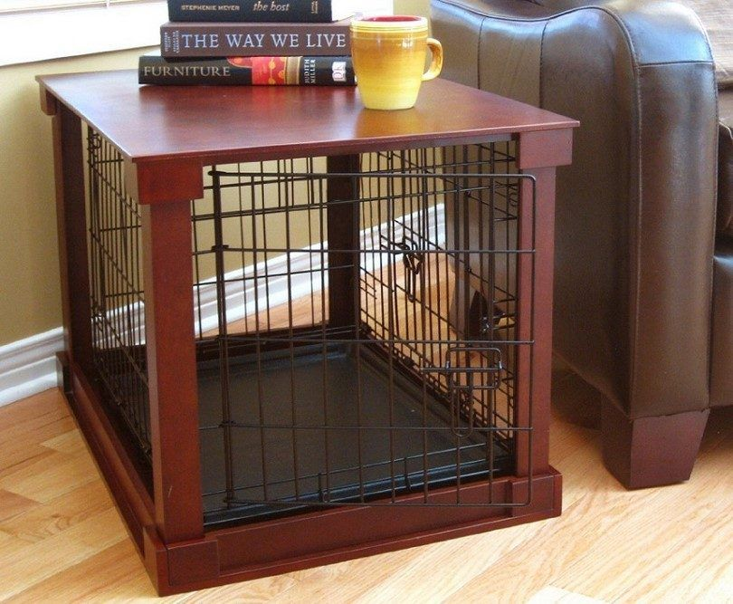 cajón del perro en la casa