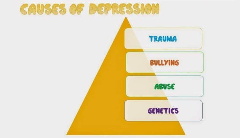 Las causas de la depresión del perro
