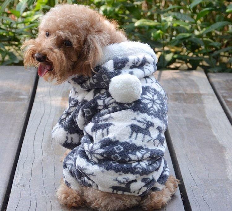 QIYUN.Z SOLAMENTE para perros pequeños ocasionales cuatro piernas Terciopelo Negro Blanco Nieve