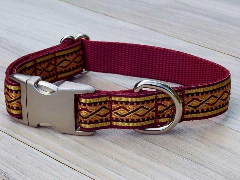 Diseñador del collar de perro en el suelo
