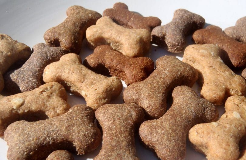 Todas las golosinas para perros diabéticos Natural