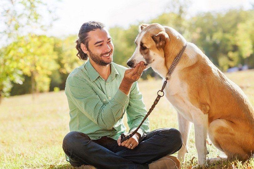 El tratamiento para su perro con diarrea