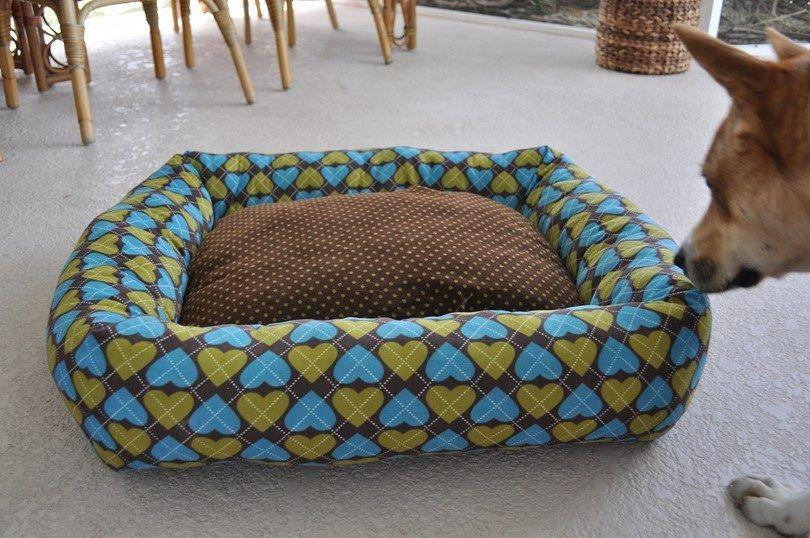 cama del perro esponjoso
