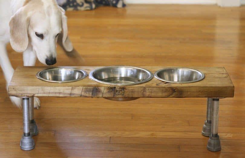 alimentador de perro hecha de madera y barras de metal viejo
