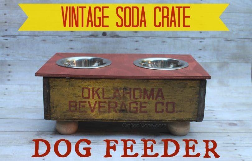 Alimentador del perro del cajón de soda de la vendimia