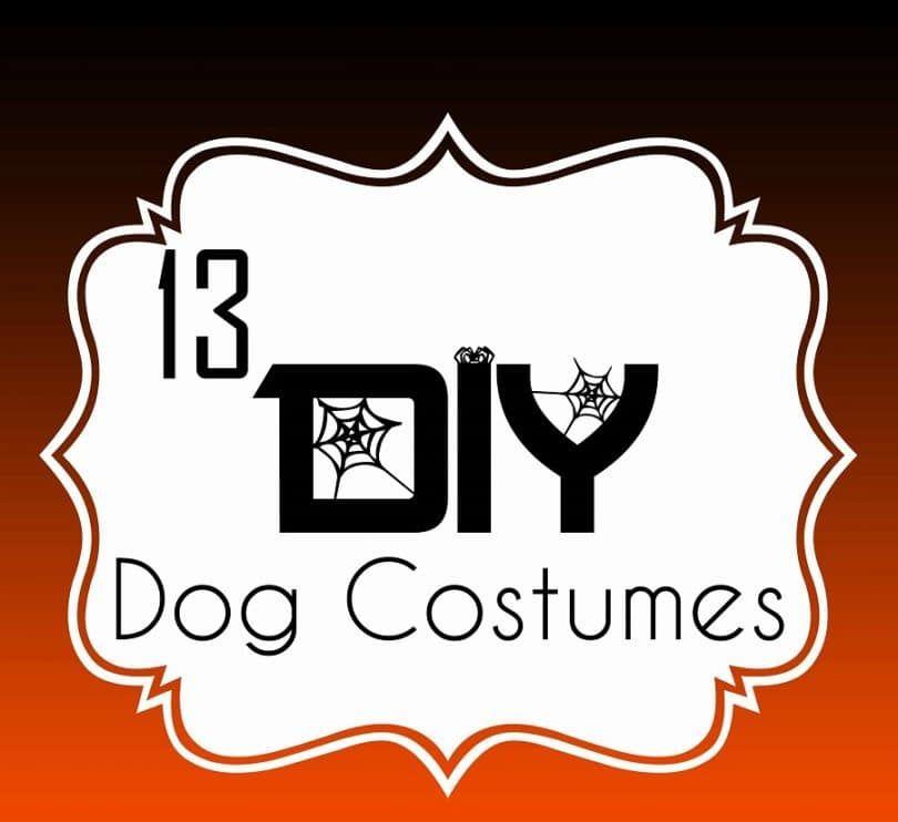 13 trajes del perro de bricolaje