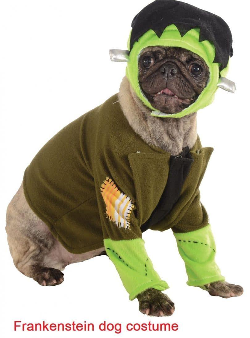 traje del animal doméstico Frankenstein