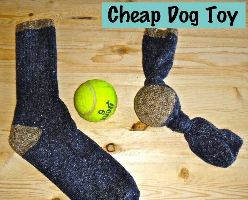 Juguete del perro con una pelota de tenis y un calcetín