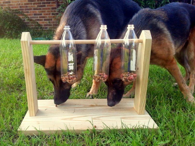 Juguete para perros con botellas de agua, golosinas y marco de madera