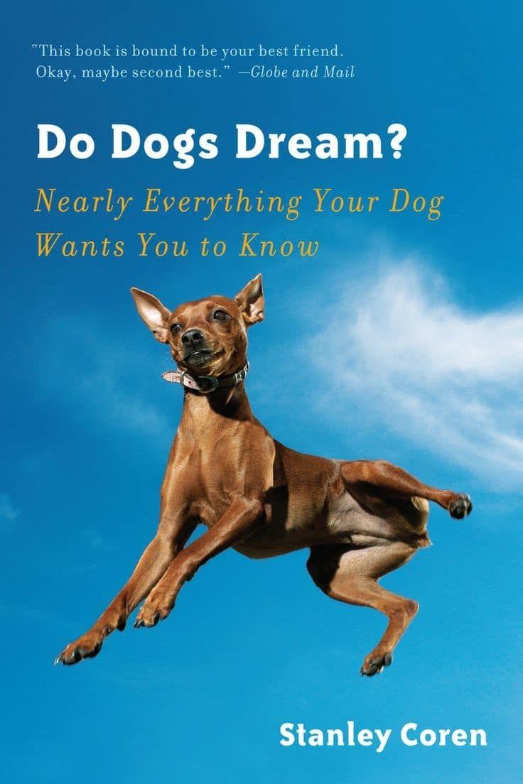 ¿Los perros sueñan libro