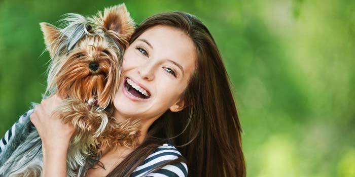 qué los perros tienen sentimientos y la forma en que ellos expresan