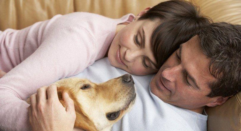 Pareja y amante del perro