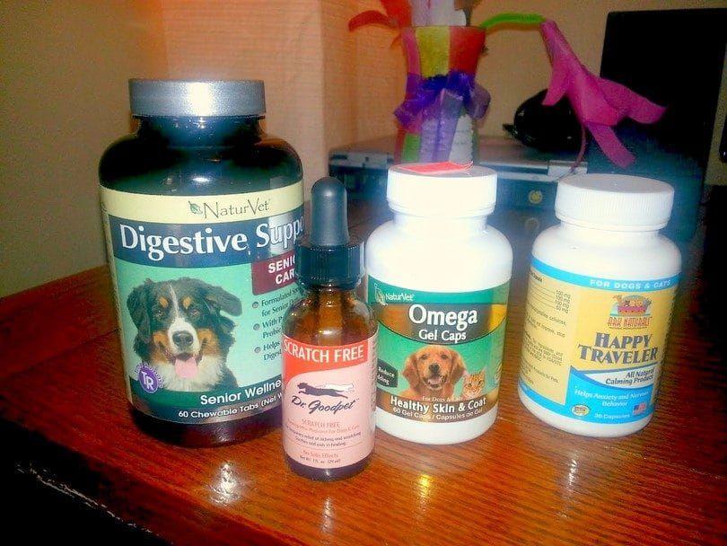 Los tratamientos para las alergias perros