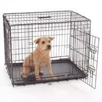 Jaula de perro para la venta