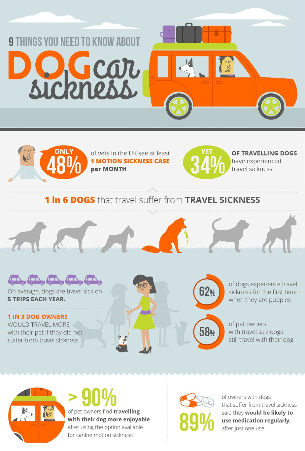 Perro con la enfermedad de coche