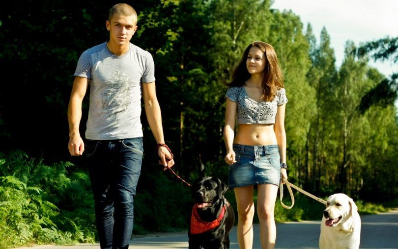 el hombre y la mujer la custodia del perro