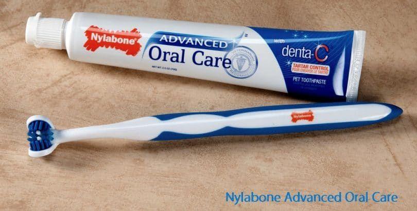 Nylabone avanzada Oral Care 2,5 oz pasta de dientes para perros de control tártaro