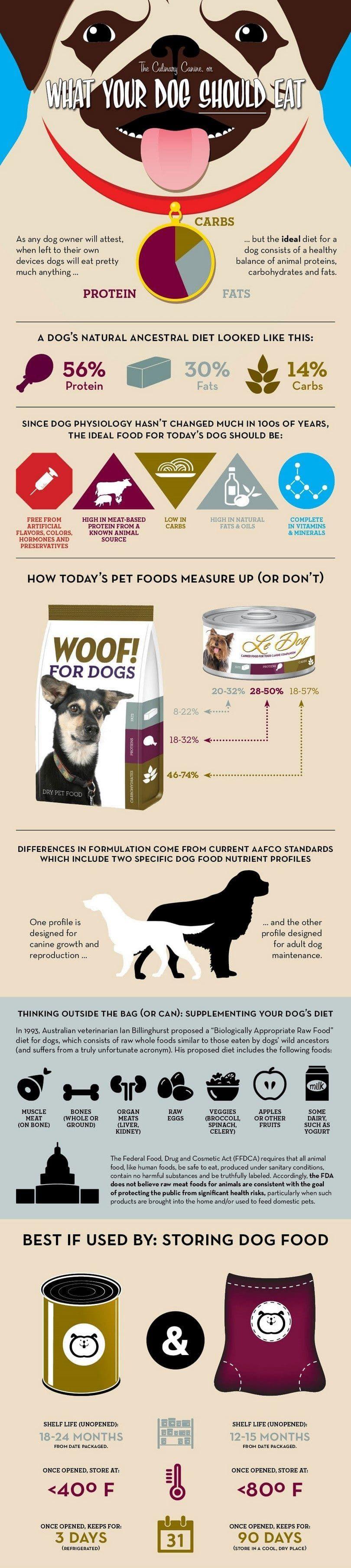 Lo que su perro debe comer infografía