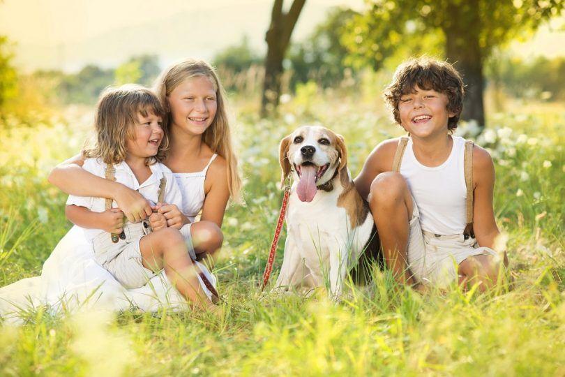 Niños con el perro