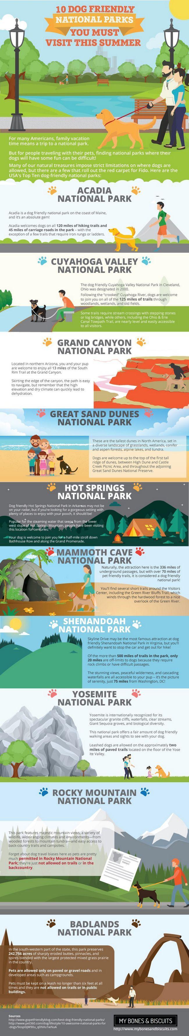 Se admiten perros en los parques nacionales de estados unidos: sacar el máximo provecho de su verano!