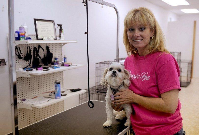 Perro negocio de la preparación: una breve guía para convertirse en perros peluquero favorito