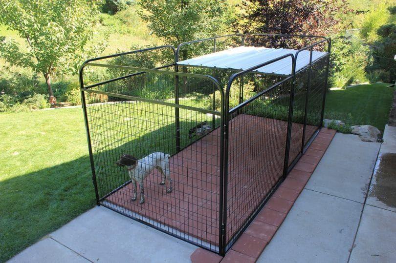 Construir un techo en la pluma de perro